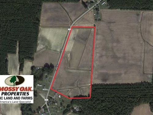 25.18 Acres of Farm Land For Sale : Lucama : Wilson County : North Carolina