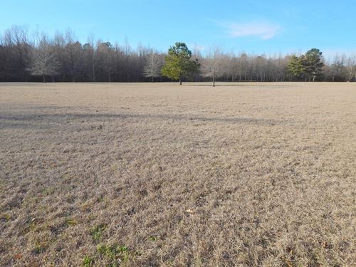 10 Acres Tom Lewis Road/ Tylertown : Tylertown : Walthall County : Mississippi