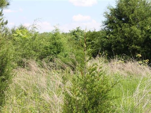32 Acres in Hart County, KY With : Magnolia : Hart County : Kentucky