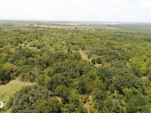 10 ac Near Scurry, Wildlife, Timber : Scurry : Kaufman County : Texas