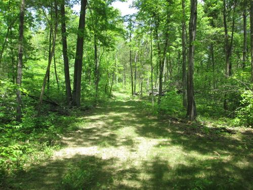 49 Acres In Hart County, Ky : Magnolia : Hart County : Kentucky