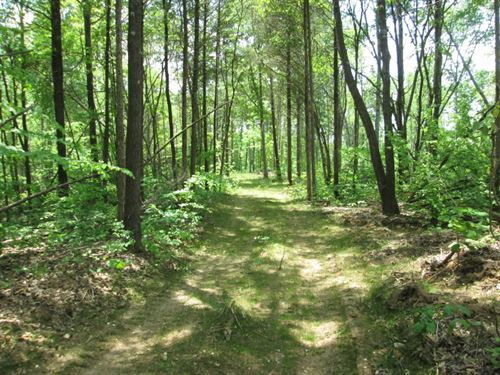 32 Acres In Hart County, Ky : Magnolia : Hart County : Kentucky