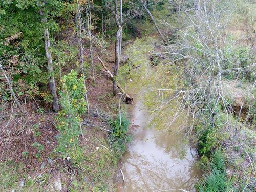 Wooded Acreage : Gaffney : Cherokee County : South Carolina