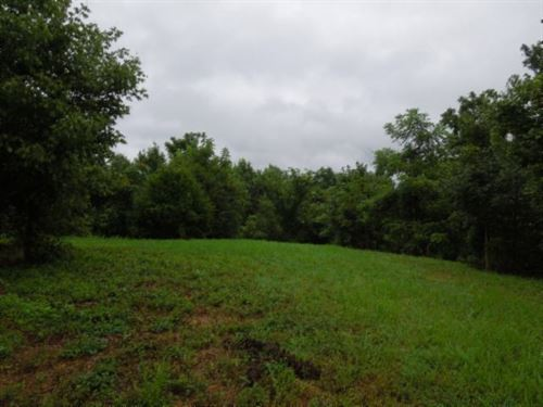 55.83 Ac, Marketable Timber, Sp Fe : Cookeville : Jackson County : Tennessee