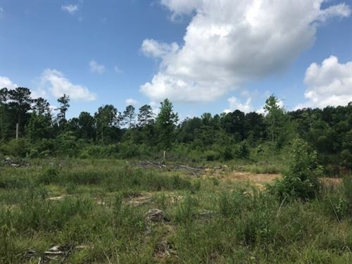 30 Acres Amite Co Easley Road : Liberty : Amite County : Mississippi