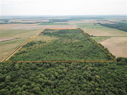 80 Acre Hunting Property Near Cla : Clarendon : Monroe County : Arkansas