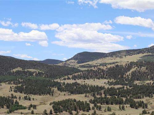 Sleeping Elk Ranch : Guffey : Park County : Colorado