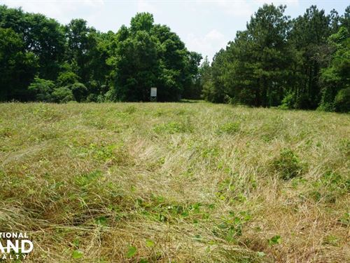 Akron Homesite, Hunting, And Timber : Akron : Hale County : Alabama