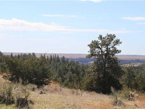 160 Acres, More OR Less, Recreati : Springview : Keya Paha County : Nebraska