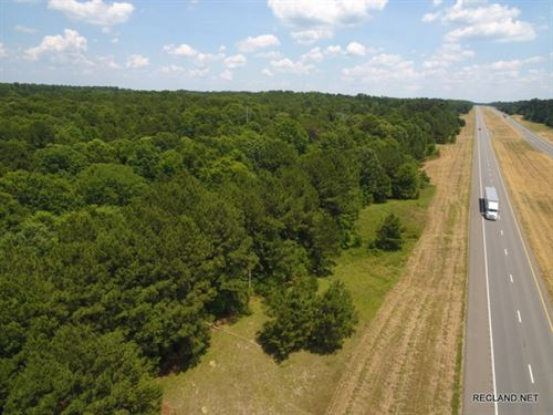 50 Ac, Mixed Timberland With Excel : Tenaha : Panola County : Texas