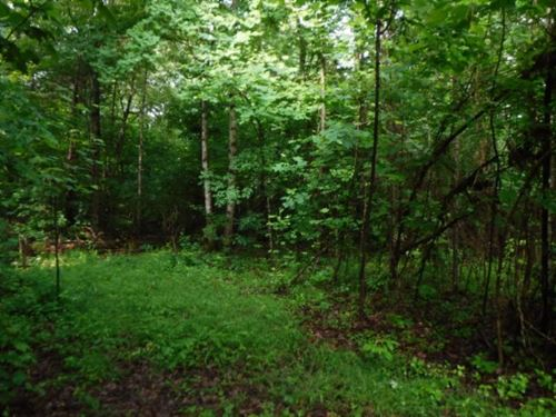 19.50Ac Ideal For A Develpoment : Cookeville : Putnam County : Tennessee