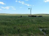 Wild Horse Creek Ranch : Dunning : Logan County : Nebraska