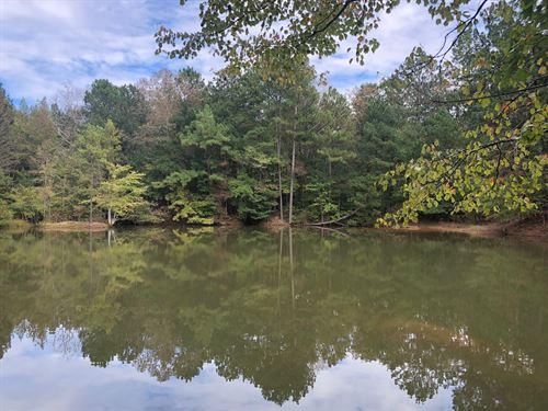 195.62 +/- Acres, Bartow County : Taylorsville : Bartow County : Georgia
