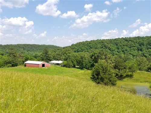 40 Acre Rolling Farm With View of : Wasola : Ozark County : Missouri