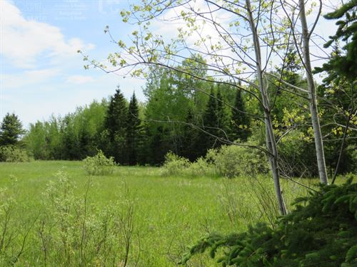 Ideal Recreational Property : Brule : Bayfield County : Wisconsin
