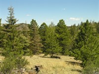 2450602, Perfect 35 Acres For The : Cotopaxi : Fremont County : Colorado