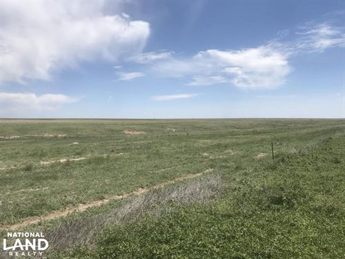 Western Kansas Crp For Sale - Incom : Syracuse : Hamilton County : Kansas