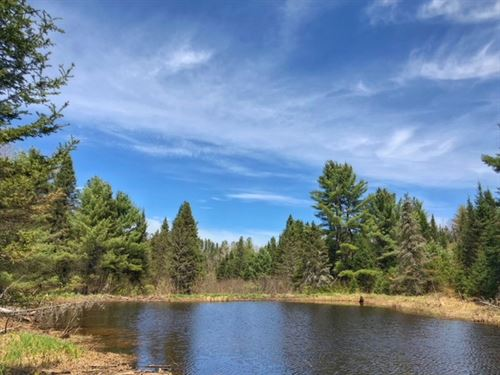 Usfs 3500 Rd Mls 1108341 : Sidnaw : Houghton County : Michigan