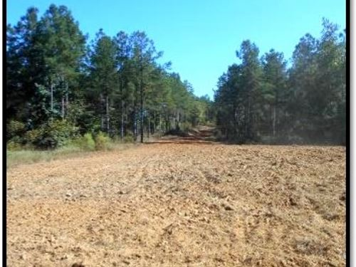 349 Acres In Madison County : Camden : Madison County : Mississippi