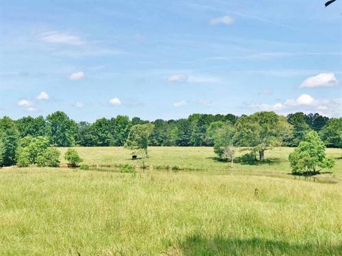 74 Acres Pasture Land For Sale Mize : Mize : Smith County : Mississippi