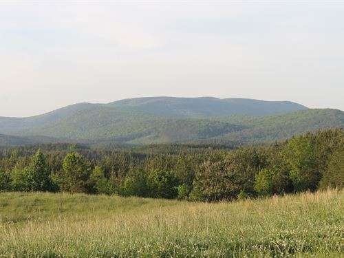 Mountain View Farm - 225+/- Acres : Ashland : Clay County : Alabama