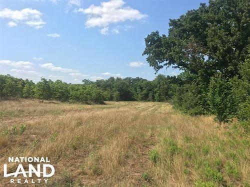 Oak Spring Ranch, Rolling, Timber : Eustace : Van Zandt County : Texas