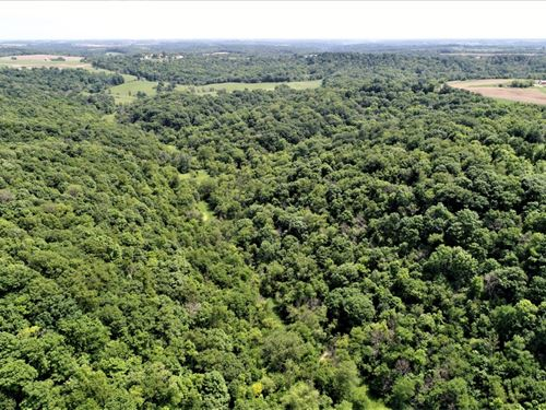 World Class Hunting Property : Soldiers Grove : Crawford County : Wisconsin