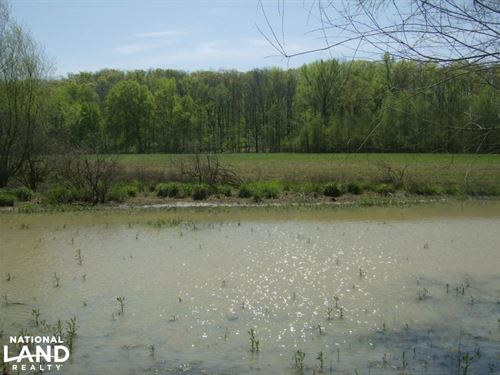 Bigelow Residential, Cropland, Deer : Bigelow : Perry County : Arkansas