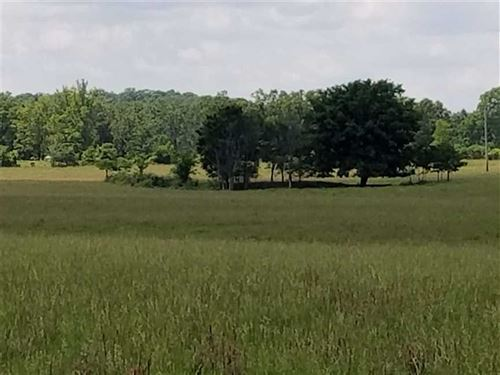 96 Acre Cattle Ranch With Hwy Fron : Doniphan : Ripley County : Missouri