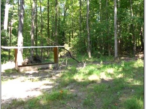 160 Acres In Calhoun Couny : Big Creek : Calhoun County : Mississippi