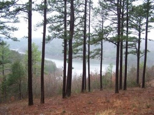 Bull Shoals Lake Frontage For Sale : Yellville : Marion County : Arkansas