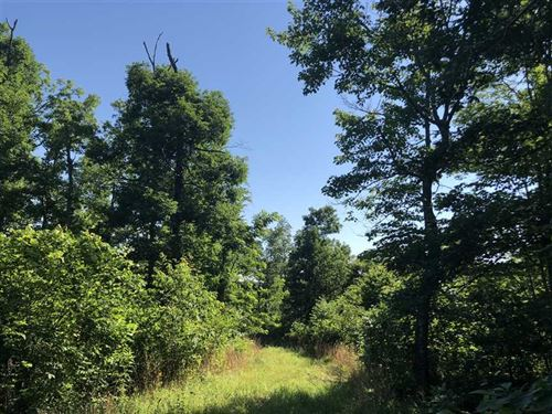 40 Acres Joined by Scott Hender : Alread : Van Buren County : Arkansas