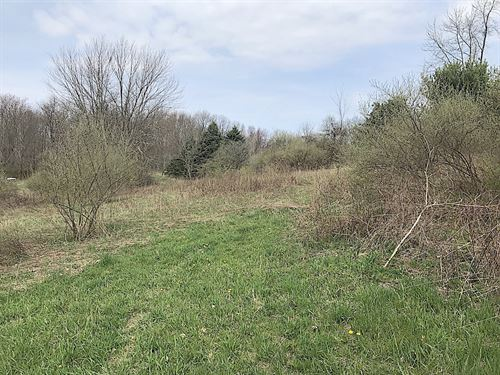 Cream Ridge Rd - 41 Acres : Lisbon : Columbiana County : Ohio