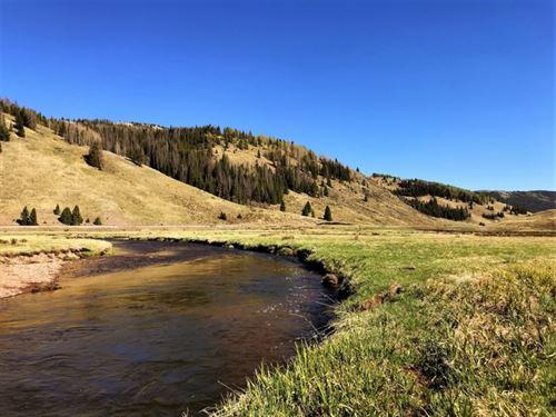 Rio DE Los Pinos Ranch : Mogote : Conejos County : Colorado