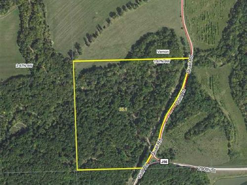 35 Acres M/L Timber Land For Sale : Mount Sterling : Van Buren County : Iowa