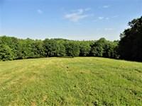 Jimmies Creek Farm : Woodruff : Spartanburg County : South Carolina