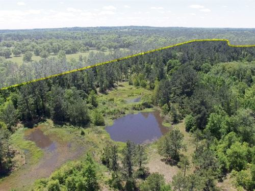 74 Acres Rosenwall Road : Huntsville : Walker County : Texas
