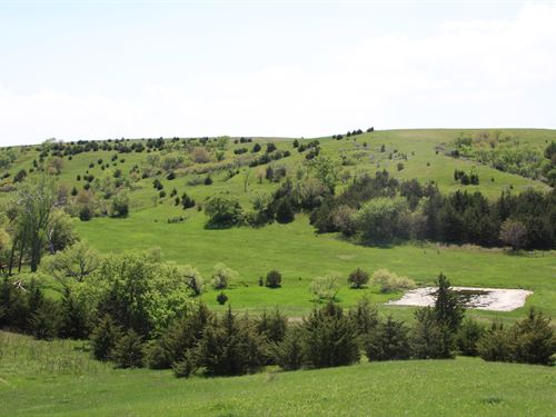 Knox County Pasture : Niobrara : Knox County : Nebraska