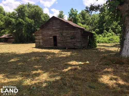 Texasville Hunting Tract : Texasville : Barbour County : Alabama
