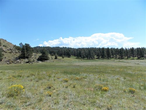 Teller Park Ranch, Parcel 3 : Florissant : Park County : Colorado