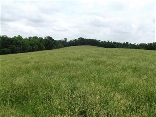 190 Acres Grant County Wisconsin : Cassville : Grant County : Wisconsin