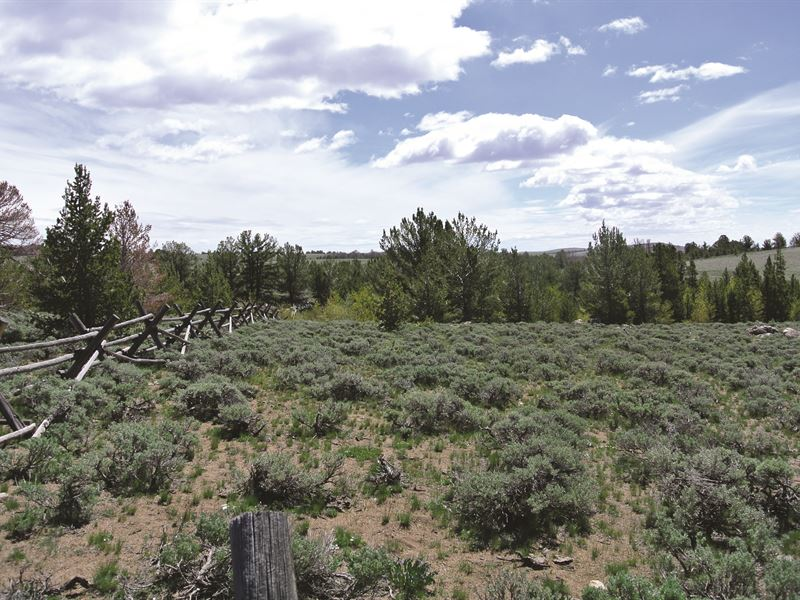 South Pass 40 Cabin Site : Atlantic City : Fremont County : Wyoming