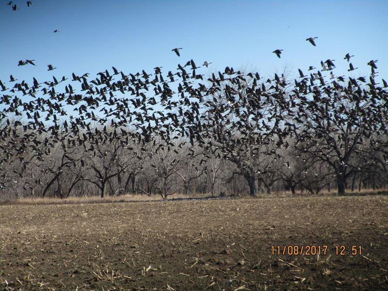North Platte Waterfowl Haven : Torrington : Goshen County : Wyoming