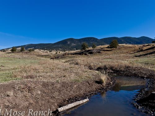 Old Mose Ranch : Guffey : Park County : Colorado