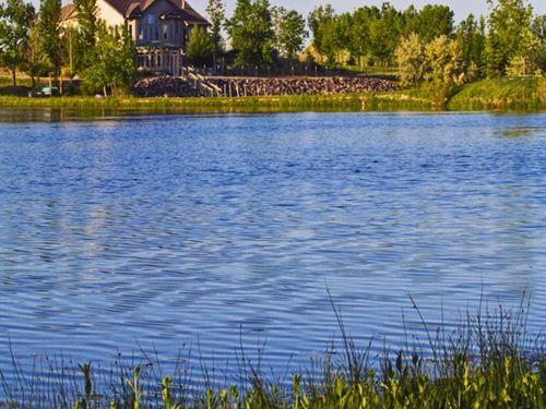 Raintree Estate : Longmont : Weld County : Colorado