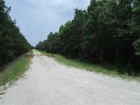 Porcher 1 Tract : Moncks Corner : Berkeley County : South Carolina