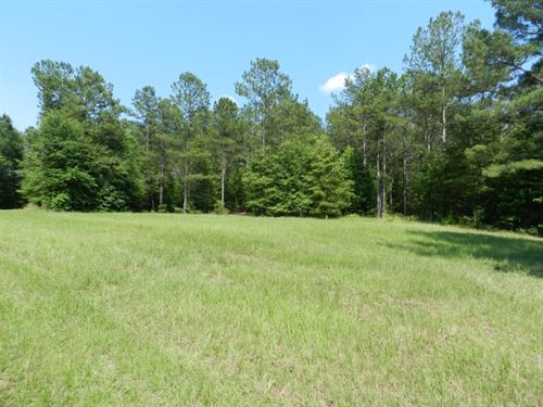 Timberland Investment & Hunting : Milledgeville : Baldwin County : Georgia