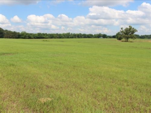 400 Acres With A Home In Claiborne : Port Gibson : Claiborne County : Mississippi