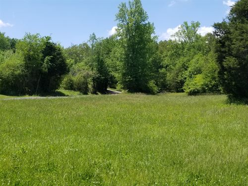 47+/-Acres Beautiful Farm Land : Whitwell : Marion County : Tennessee