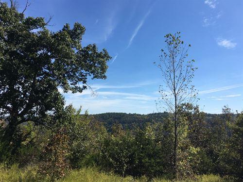 Bishop Hollow : Sylamore : Izard County : Arkansas